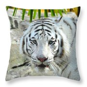 White Tiger Throw Pillow
