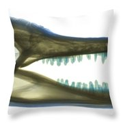 X-ray Of American Alligator Throw Pillow