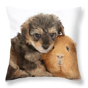 Yorkipoo Pup With Guinea Pig Throw Pillow