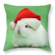Young White Rabbit Wearing A Christmas Throw Pillow