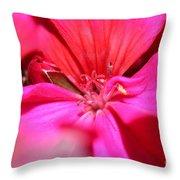 Zonal Geranium Named Tango Neon Purple Throw Pillow