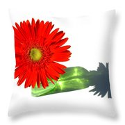 2002a-1 Throw Pillow