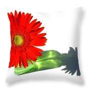 2002a-2 Throw Pillow