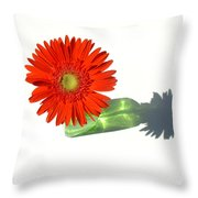2002a1 Throw Pillow