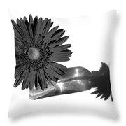 2002a2-002 Throw Pillow