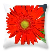 2003a1 Throw Pillow