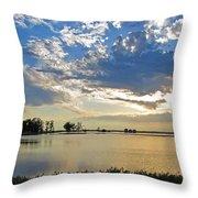 2011 Flood II Throw Pillow