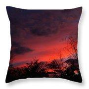 2012 Sunrise In My Back Yard Throw Pillow