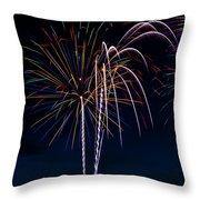 20120706-dsc06454 Throw Pillow