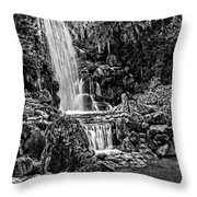 20120915-dsc09800_bw Throw Pillow