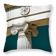 20120915-dsc09908 Throw Pillow
