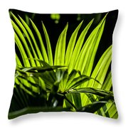 20120915-dsc09911 Throw Pillow