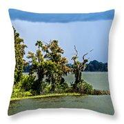 20120915-dsc09923 Throw Pillow