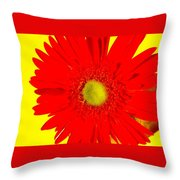 2024a2-003 Throw Pillow