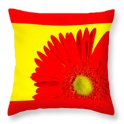 2024a2-006 Throw Pillow