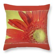 2026a5-003c Throw Pillow