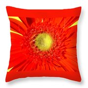 2026a5-009 Throw Pillow