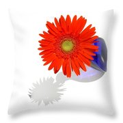 2029a3 Throw Pillow
