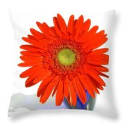 2035a1c Throw Pillow