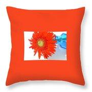 2042a-002 Throw Pillow