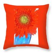 2043-009 Throw Pillow