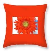 2043-010 Throw Pillow
