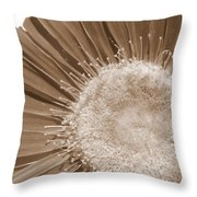 2046a-6 Throw Pillow
