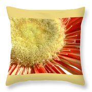 2049a1-008 Throw Pillow