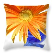 2086a Throw Pillow