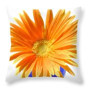 2098-1z Throw Pillow