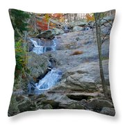 Cunningham Falls Throw Pillow