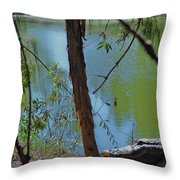 21- King Of The Swamp Throw Pillow