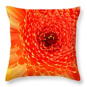 2116-001 Throw Pillow