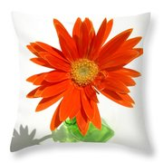2116a Throw Pillow