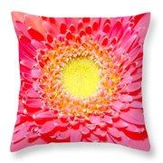 2154a1-003 Throw Pillow