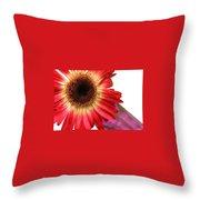 2184c-003 Throw Pillow