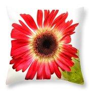 2192c-014 Throw Pillow