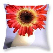 2207c1-002 Throw Pillow