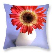 2211c-001 Throw Pillow
