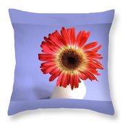 2211c-004 Throw Pillow