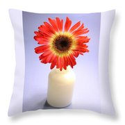 2216c1-003 Throw Pillow