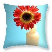 2230c1 Throw Pillow