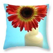 2231c1-001 Throw Pillow