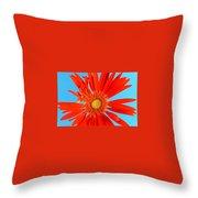 2277c2-007 Throw Pillow