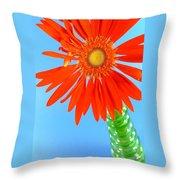 2278c2-003 Throw Pillow
