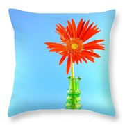 2286c1 Throw Pillow