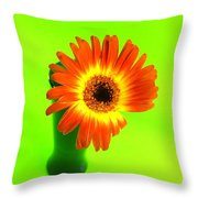 2317c Throw Pillow