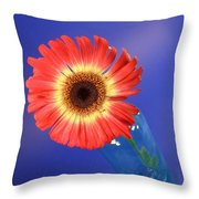 2375c Throw Pillow
