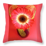 2406c-003 Throw Pillow
