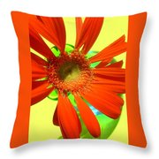 2504c-007 Throw Pillow